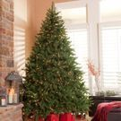 Hayneedle - 40% Off Christmas Trees and Holiday Decor